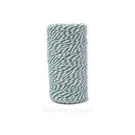 Decoratief touw katoen groen wit voor vlagletters 2 meter