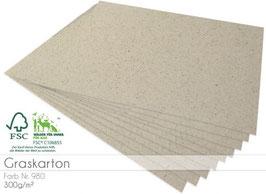 Cardstock Graskarton 300g/m²