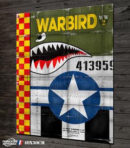 Plaque métal déco warbird WW2 avions chasseurs seconde guerre mondiale.