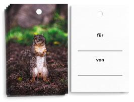 """Geschenkanhänger """"Hörnchen"""""""