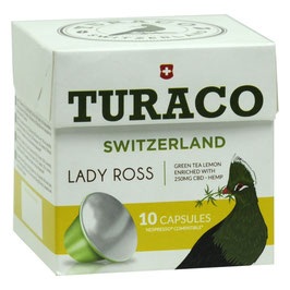 TURACO LADY ROSS - pcode