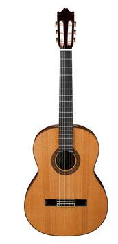 IBANEZ Konzertgitarre Mod. G300-NT