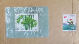 竹小型シート