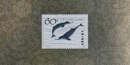 揚子江カワイルカ小型シート