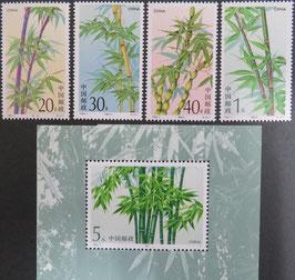 竹 竹小型シート