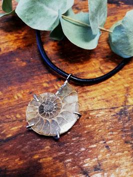 Ammonite Pentagram