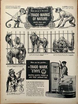 商品番号19065 雑誌「LIFE」1940年代広告 額入り(黒)エチルガソリン