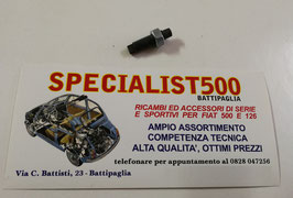 VITE REGISTRO PUNTERIE FIAT 500 F L R