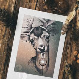 Print - Fallow Deer