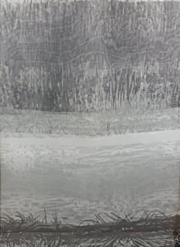 Reduziert, Designer Organza mit Bordüren Muster, 50 cm