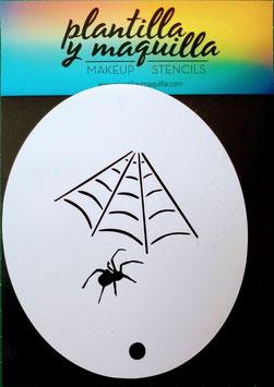 H25 Spider
