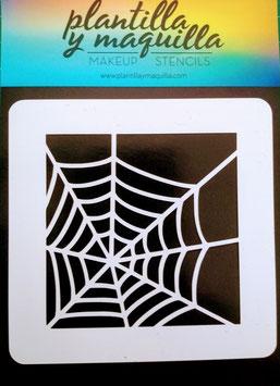 H15 spider web