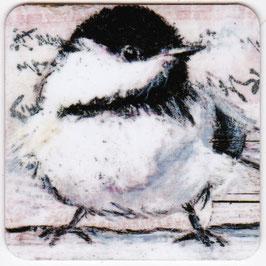 Vogel 016