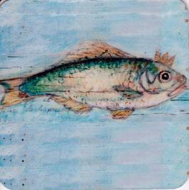 Fisch 001