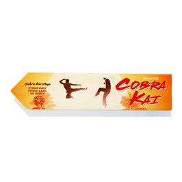 Cobra kai / Karate Kid