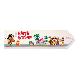 Dragon Ball Kame house