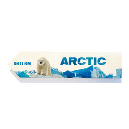 Ártico / Arctic