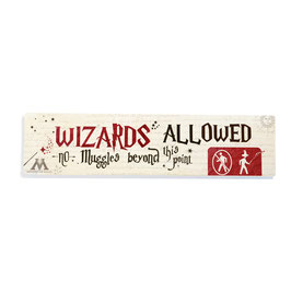 Wizards Allowed, no muggles beyond this point