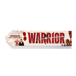 Warriors (serie)
