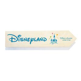 Disneyland (varios diseños)
