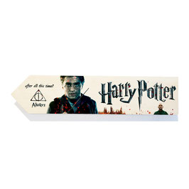 Harry Potter (varios diseños)