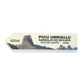 Picu Arriellu o Naranjo de Bulnes, Picos de Europa