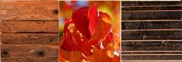 Altholzbild - Herbst - UNIKAT