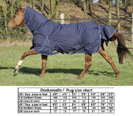 PADDOCK RUG CHAMPION COMBO WINTER   H-2551