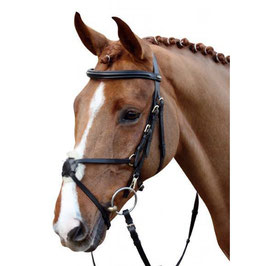 Bridle -Mexican Style-with padded grackle noseband H- 5847