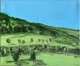 'Erlenmoos slopes'
