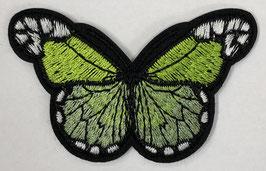 Grote vlinder applicatie licht groen