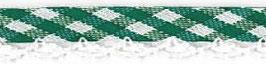 Ruitjes biaisband met een kantje groen