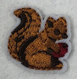Donker bruine eekhoorn applicatie