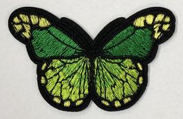 Grote vlinder applicatie groen