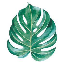 Botanisch blad applicatie
