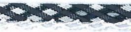 Ruitjes biaisband met een kantje donker blauw