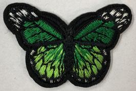 Kleine vlinder applicatie groen