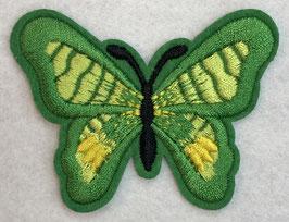 Applicatie vlinder groen met een zwart lijf