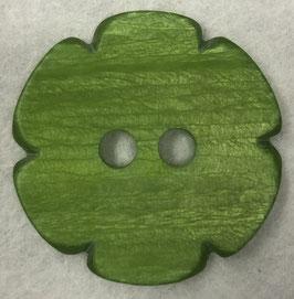 Groene bloemknoop 2 gaats