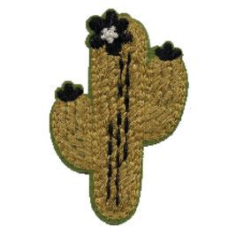 Cactus applicatie
