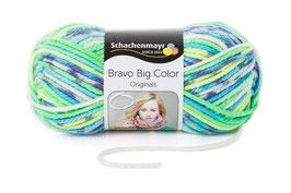 Bravo Big Color Col: 91