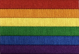 Regenboog vlag applicatie