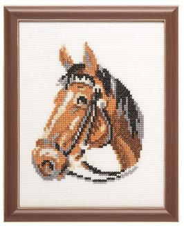 Van een Paardenhoofd