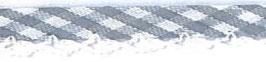 Ruitjes biaisband met een kantje grijs