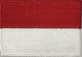 Vlag applicatie van Polen