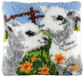 Lammetjes knoopkussenpakket