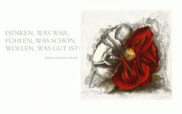 Radierung - Rose - 1687