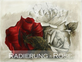 Original-Radierung - Rose - 1375