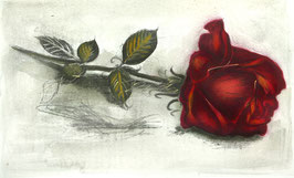 """Original-Radierung - Rose """"Nur für Dich"""" - 1360"""