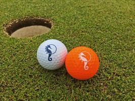 Golfball Timmendorfer Strand/Niendorf